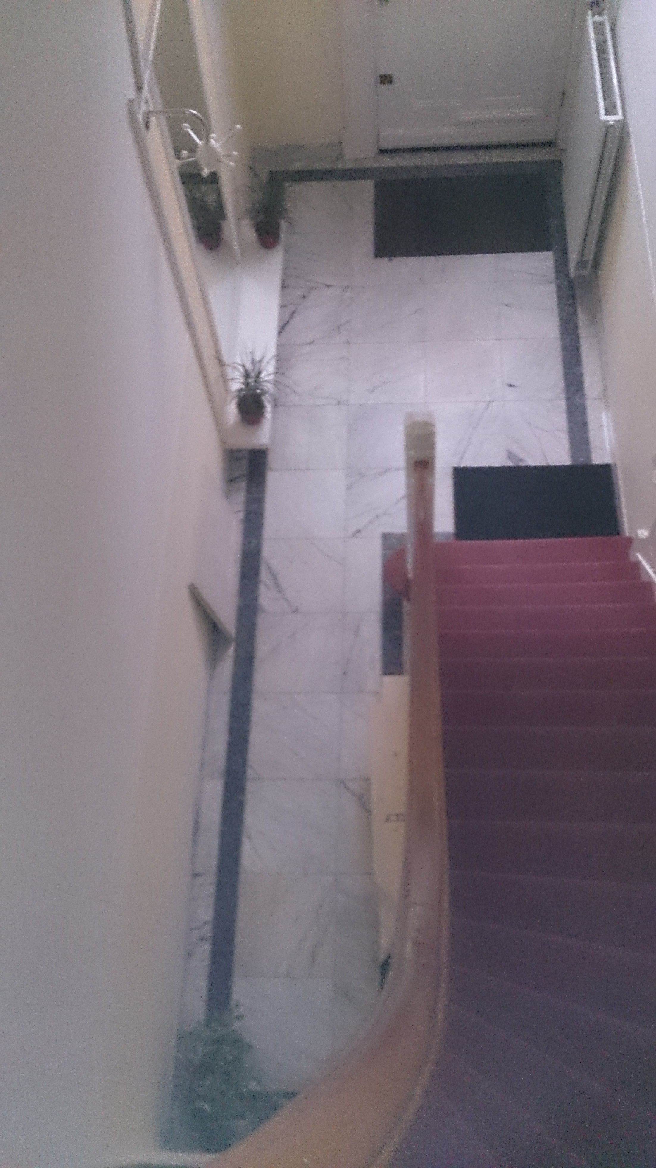 Marmer vloer te Groningen wordt vervangen door jugendstil-vloer
